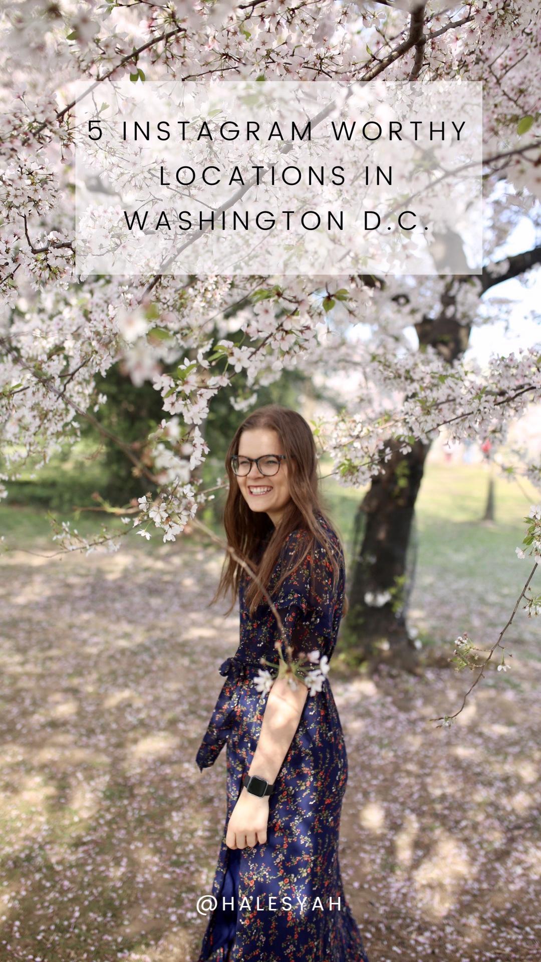 5 Instagram Worthy Locations in Washington D.C.