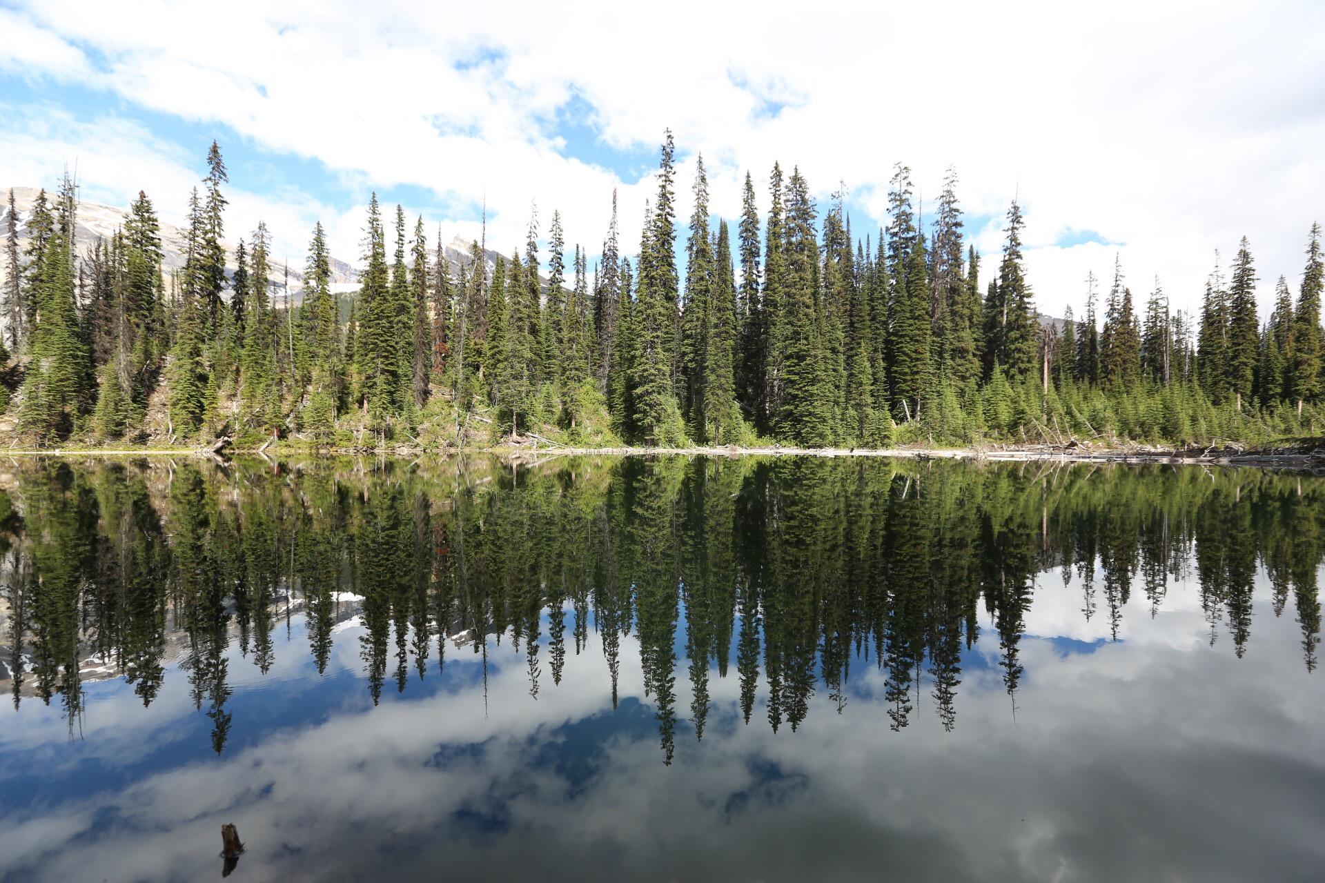 15 Photos to Inspire You to Visit Banff National Park and Yoho National Park