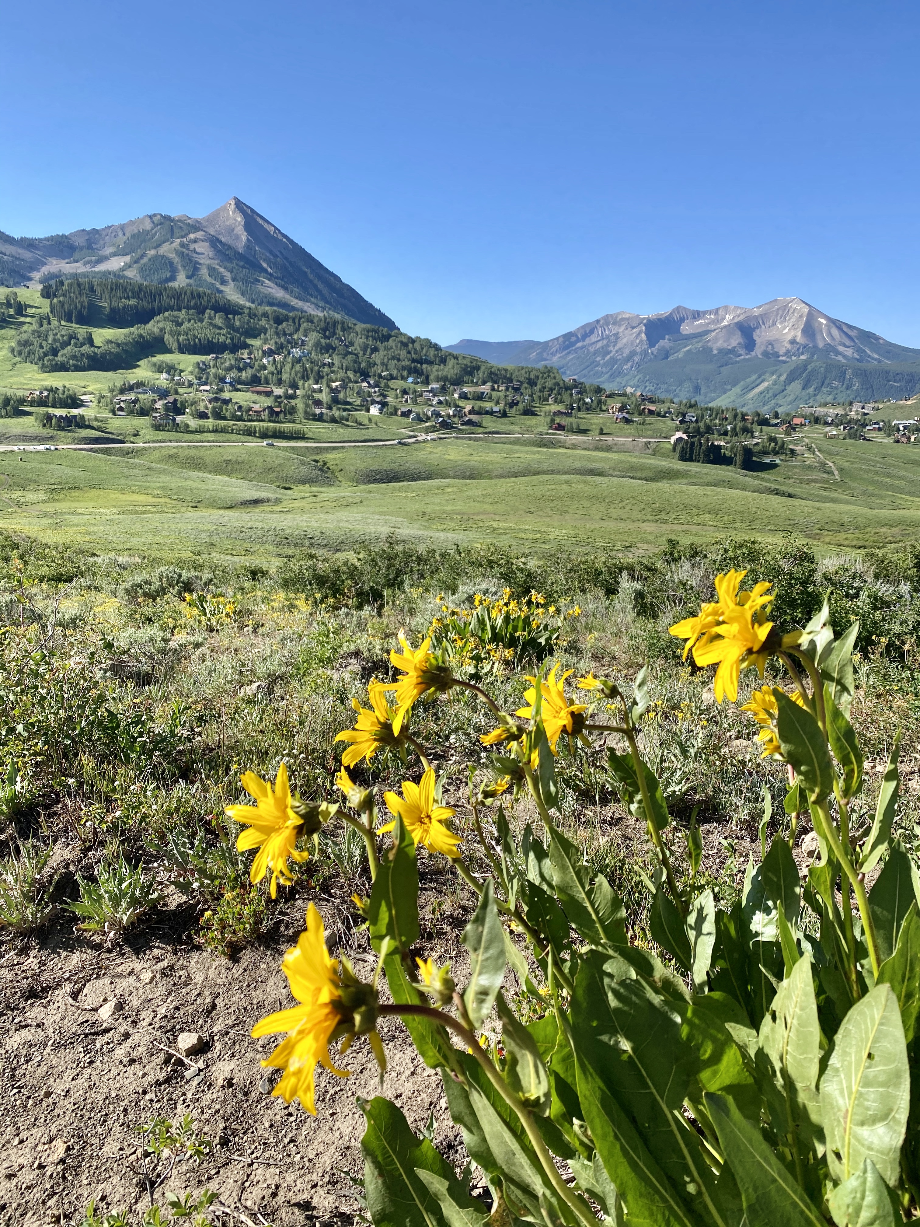 Colorado Road Trip during COVID-19, featuring 3 National Parks